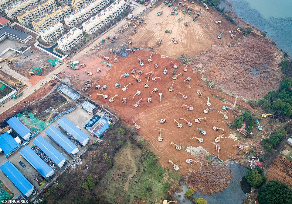 The Chinese city ravaged by a deadly new virus has vowed to build two hospitals in less than a week to fight an outbreak that has left at least 132 people dead in the country. In the picture above, mechanical equipment are seen working on the construction site of the coronavirus hospital in the Caidian District in the western suburb of Wuhan, China, on January 24