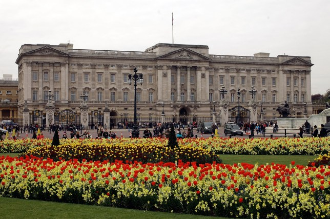 LONDON, ENGLAND - APRIL 15: Blossom and spring flowers bloom in front of Buckingham Palace before the Royal Wedding on April 15, 2011 in London, England. Stands, media facilities and temporary fencing are being erected along the route the couple will travel. (Photo by Matthew Lloyd/Getty Images)