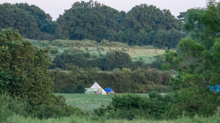 Knepp is close enough to London to attract tourists to its camping sites. 'I'm very sympathetic to the Knepp estate,' says Tim Lang, professor of food policy at City, University of London, 'but it's not the blueprint'