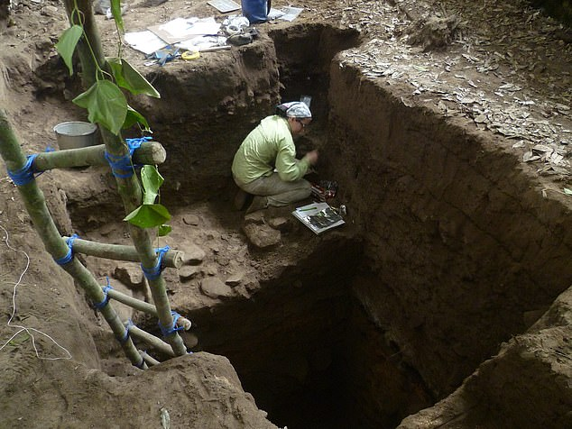The human remains were found in the Maya Mountains of Belize and were buried at various points in the past 10,000 years, according to University of Exeter experts