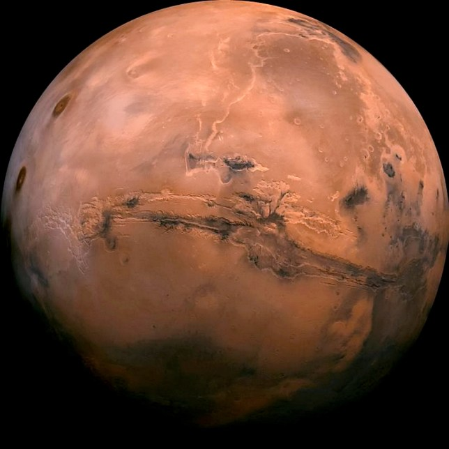 Mars is set to be visited by a fleet of spaceships from Earth (NASA / SWNS)