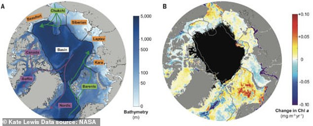 The increases were driven in part by melting sea ice, which increased the territory that phytoplankton could grow in, but also a steady supply of nutrients swept into the region from other oceans