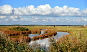 Typical Sheppey marsh scenery