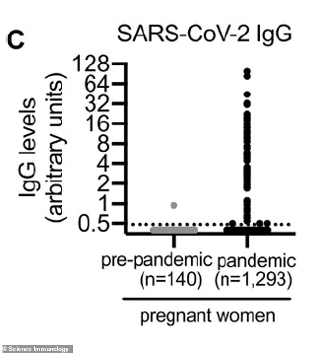 Black and Hispanic women were much more likely to test positive for antibodies at 9.7% and 10.4%, respectively, which is five-fold the number of white and Asian women who had antibodies. Pictured: Coronavirus antibodies in pregnant women pre-pandemic and during the pandemic