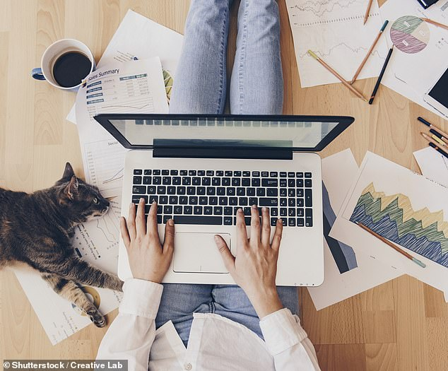 Change of lifestyle: The laptop in the attic is so ubiquitous it has acquired its own acronym: WFH, or working from home