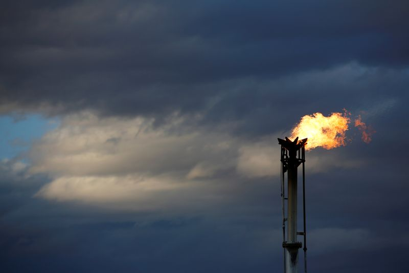 © Reuters. FILE PHOTO: A flare burns off excess gas from a gas plant in the Permian Basin in Loving County