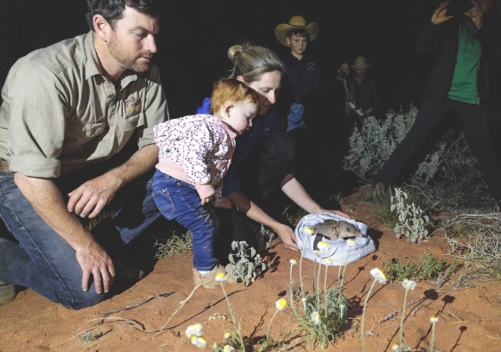 reece pedler and rebecca west with daughter isla, releasing a bilby