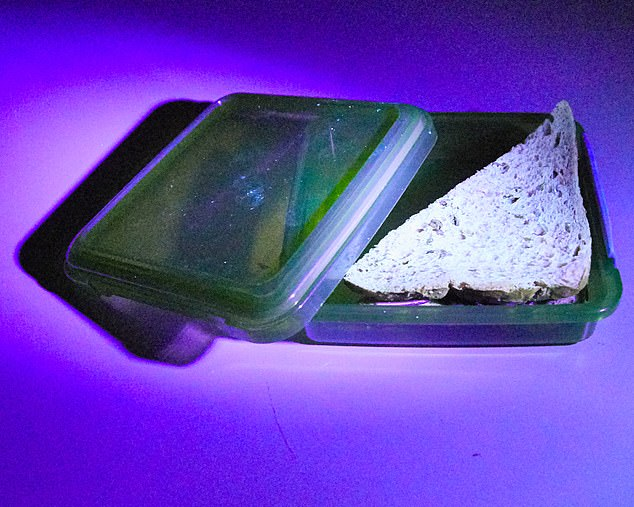 QUICK RINSE: There are traces of 'germs' on my sandwich box after just rinsing my hands