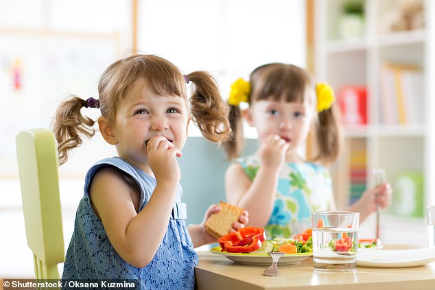 Researchers blame bogus allergy tests that claim childhood eczema and asthma can be beaten by avoiding foods such as tomatoes, strawberries and milk. Pictured: Stock image