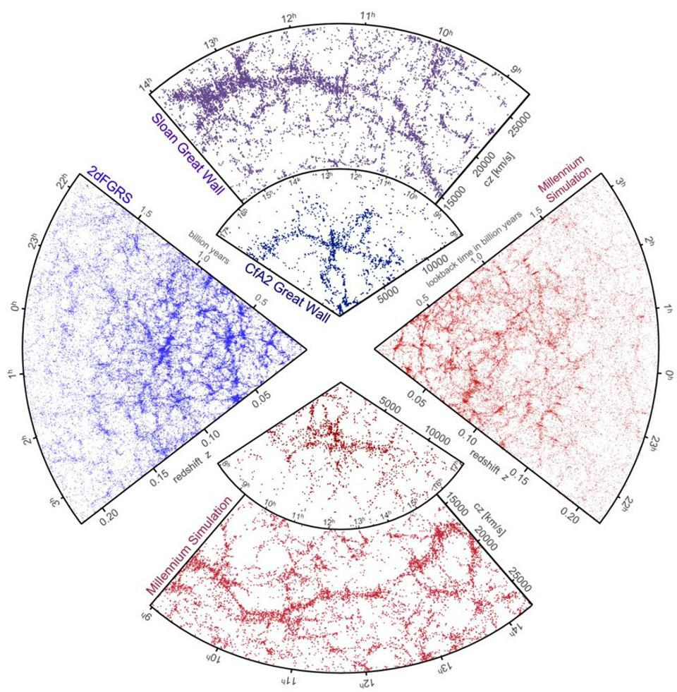 The Universe's large-scale structure as seen by observations and predicted by simulations.