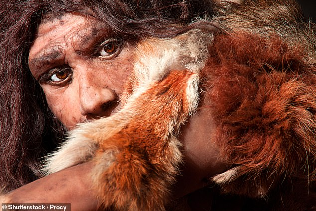 The process of replacing the Neanderthal's original Y chromosomes would have taken in the order of tens of thousands of years, German experts predicted