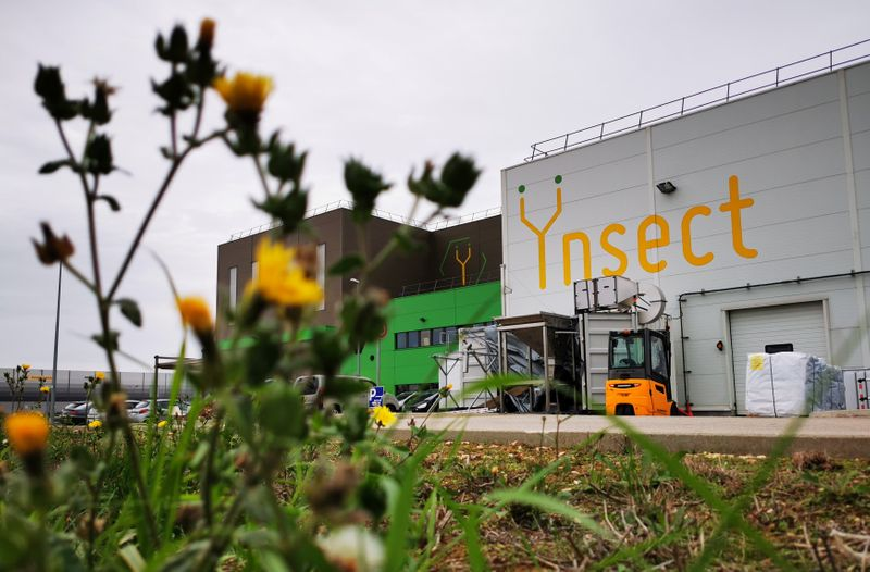 © Reuters. French start-up Ynsect plans to build world's biggest bug farm