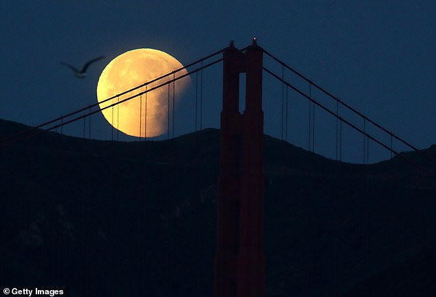 Legend has it that ghosts and spirits are more active on Halloween, but these ghoulish entities are not the only things coming out on October 31 - a rare Blue Moon is also set to rise on the same day. Pictured is a Blue Moon snapped in 2018 hanging over San Francisco, California