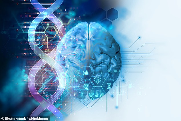 Insights into how swiftly brains age — and how likely one is to develop Alzheimer's and other forms of dementia as a result— could come from a new epigenetic clock (stock image)