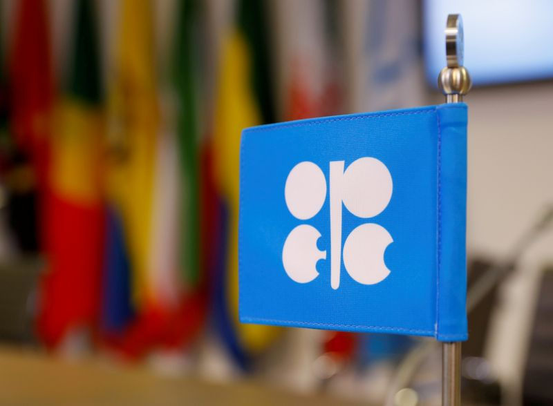 © Reuters. FILE PHOTO: The logo of the Organization of the Petroleum Exporting Countries (OPEC) is seen inside their headquarters in Vienna