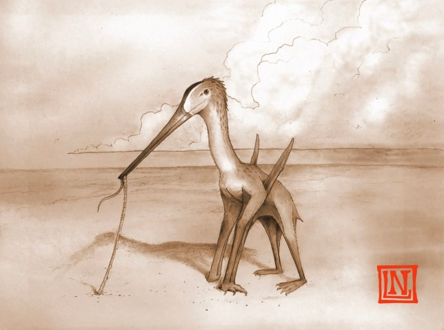 An artist's impression of the newly-discovered Leptostomia begaaensis dinosaur