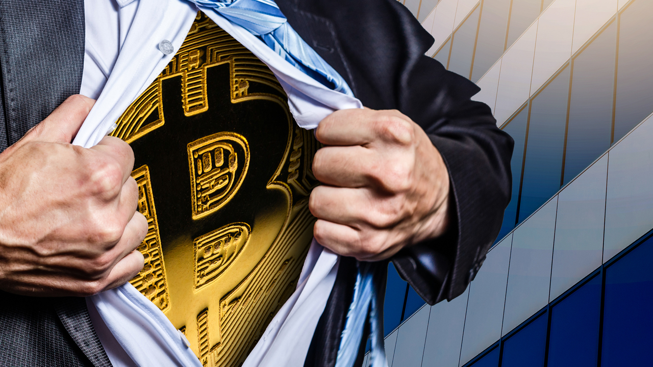 Price Increase Drives 98% of Bitcoin Holders in a State of Profit