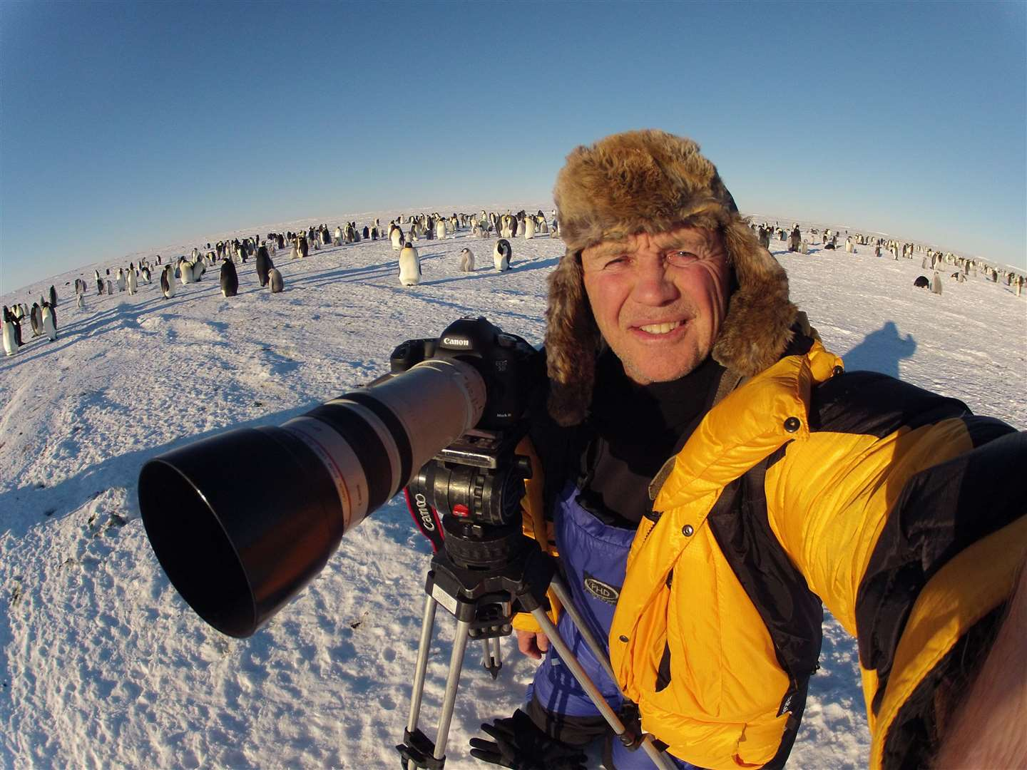 Doug Allan at the Emperor Penguin Colony