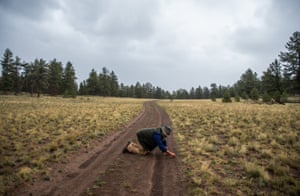 On his hands and knees, Brian Busse searches for peridot along the road on a rainy day at one of his mining claims in the mountains outside of Salida, Colorado.