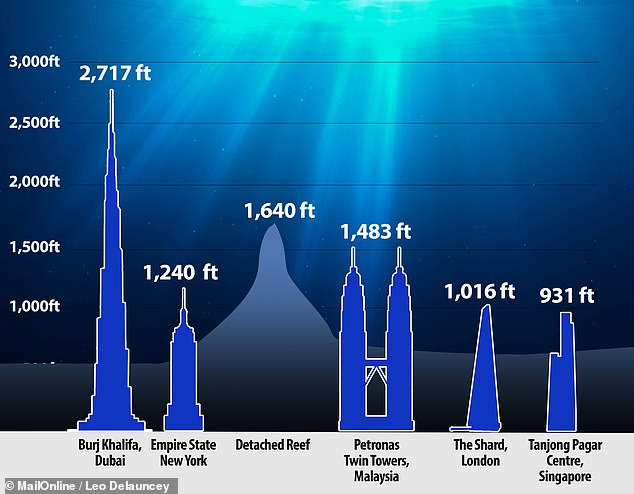 The newly-discovered reef's height dwarfs that of New York's Empire State Building, France's Eiffel Tower and The Shard in London.Reefs form from the growth of successive generations of corals — first attached to rocks on the seafloor and later to the skeletons of their predecessors. They grow up until they reach the ideal depth beneath the sea surface — and over thousands of years can form vast structures as they adapt to changing sea levels