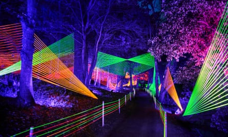 Bedgebury Neon Strings installation