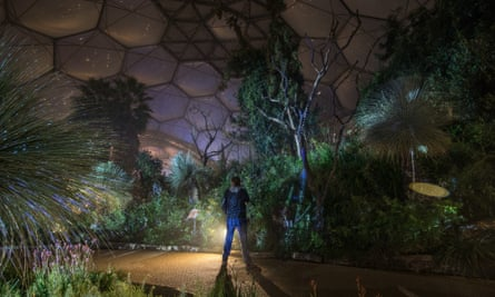 Eden Project Lights Up For Christmas