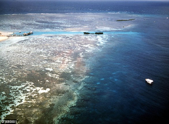 An aerial view of Australia's Great Barrier Reef.The corals of the Great Barrier Reef have undergone two successive bleaching events, in 2016 and earlier this year, raising experts' concerns about the capacity for reefs to survive under global-warming