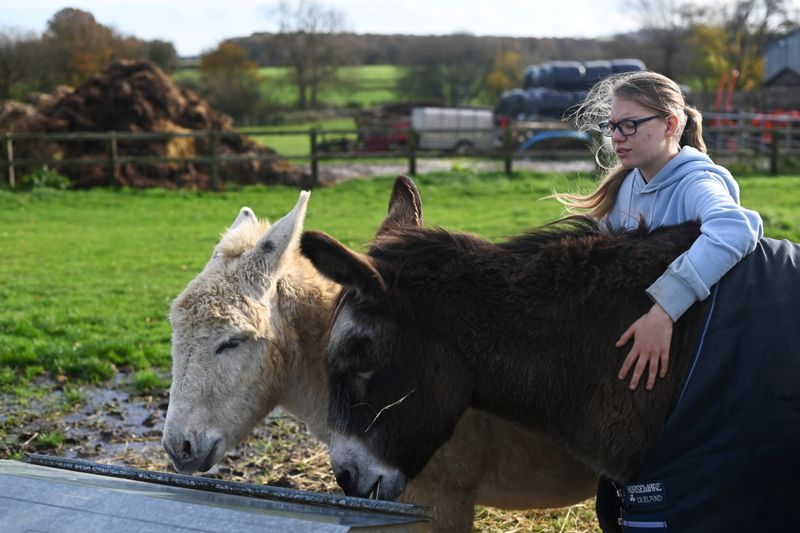 © Reuters. Emily Trice relaxes as she connects with donkeys Milly and Max, during a visit to Future Roots in Sherborne