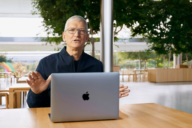 Apple CEO Tim Cook with his MacBook