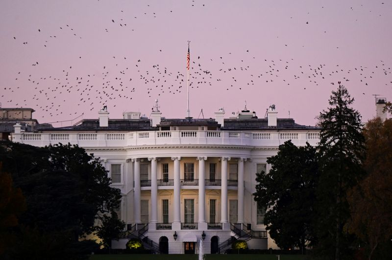 © Reuters. Birds fly over the White House at dusk, the day after a presidential election victory was called for former Vice President Joe Biden, in Washington