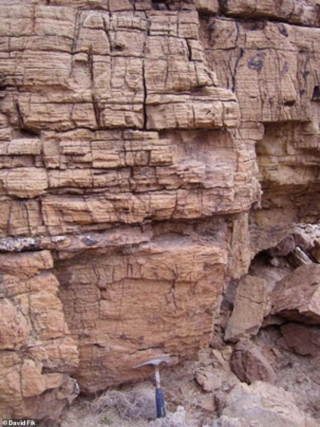 It was originally thought that the first complex life evolved 635 million years ago - based on traces of chemicals found in rock samples taken in Oman that back to that period that were remarkably similar to the chemicals produced by modern sponges