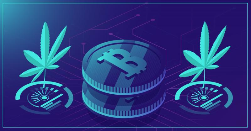 New Redeemable Cryptocurrency Cana Token Launches, Backed