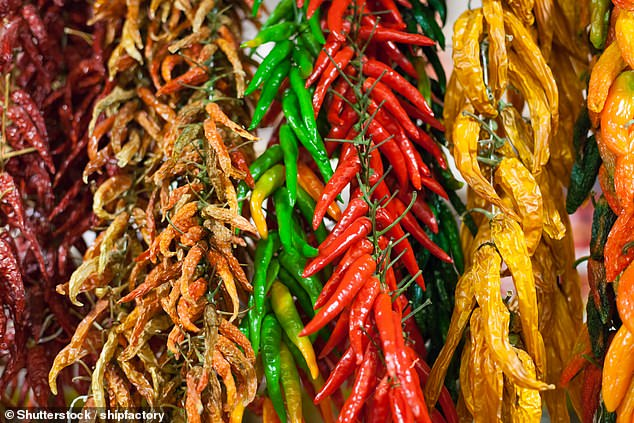 Researchers from the US found that the anti-inflammatory properties of capsaicin — the compound that gives peppers (pictured) their fiery taste — may have wide health benefits