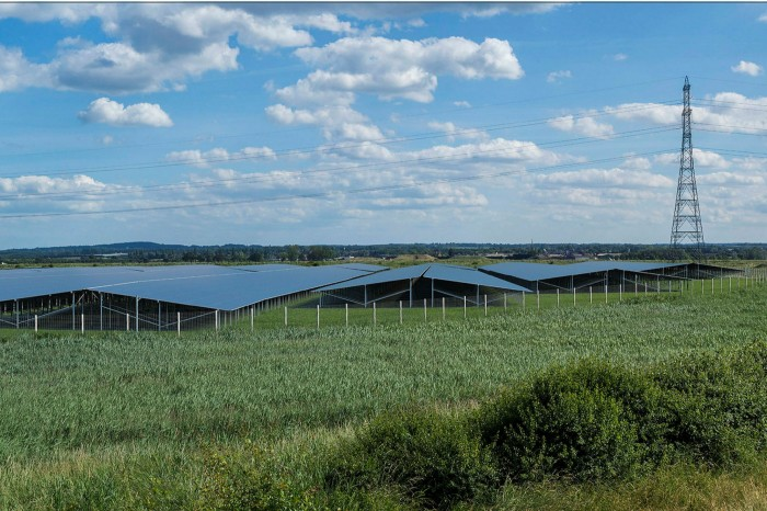 Cleve Hill near Graveney, where Hive Energy is planning to build its solar and storage site. The company is deciding which technology to use for its battery but is likely to opt for lithium-ion