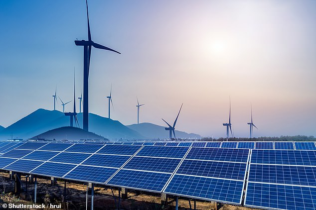 'Here to stay': Renerable energiues are obviously a growth sector - but how do you invest??