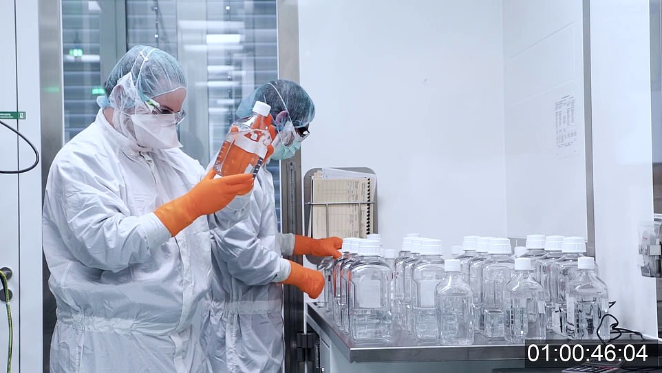 The vaccine is collected into bulk vials by lab technicians in sterile scrubs