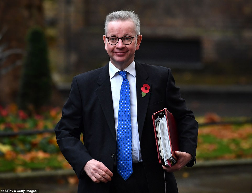 The National Audit Office said there was no evidence Mr Gove (pictured) had been involved in the awarding of the contract