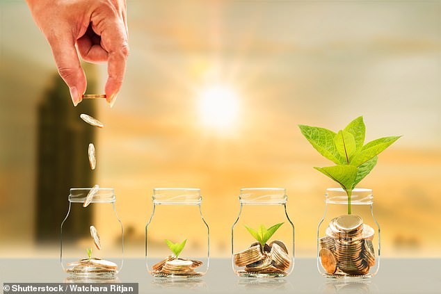 Green shoots of recovery? The Financial Mail on Sunday's reporters reveal where they plan to invest their money in 2021 after a rough year in the markets in 2020