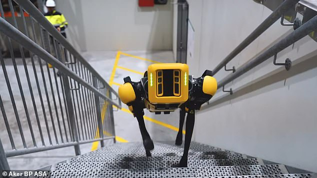 Spot, the quadruped robot has been developed by Boston Dynamics. The firm says all of its sales will be subject to terms and conditions that dictate the 'beneficial use' of its robots