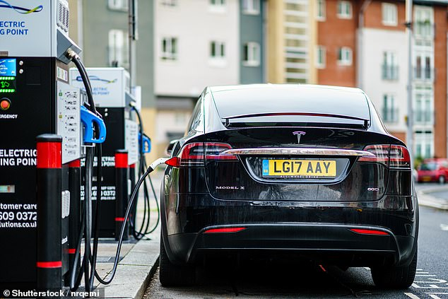 Sarag Bridge plans to invest in investment trust Scottish Mortgage, which holds some of the world's tech companies, including electric car manufacturer Tesla (pictured)