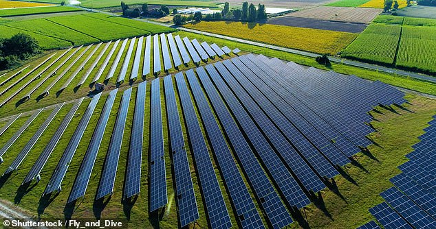 Green plan: Politicians look likely to stimulate economies with new programmes to combat climate change