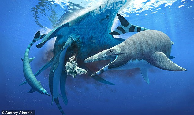 Researchers have discovered the fossilised remains of a new species of mosasaur - an ancient sea lizard from the age of the dinosaurs