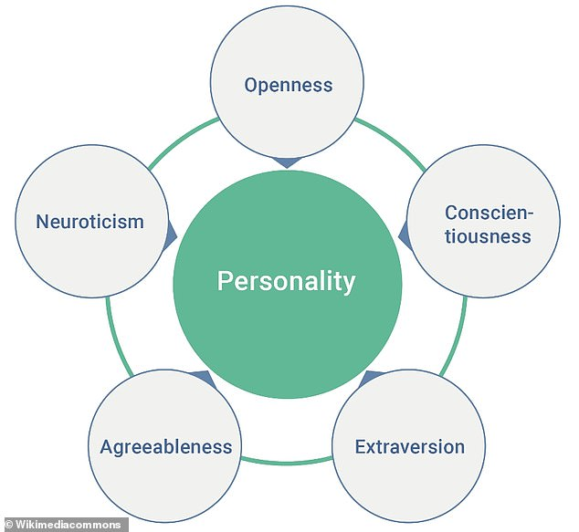 According to a psychological trait theory developed in the 1980s called the big five, human behaviour is comprised of five personality traits that form the acronym OCEAN – openness, conscientiousness, extraversion, agreeableness and neuroticism