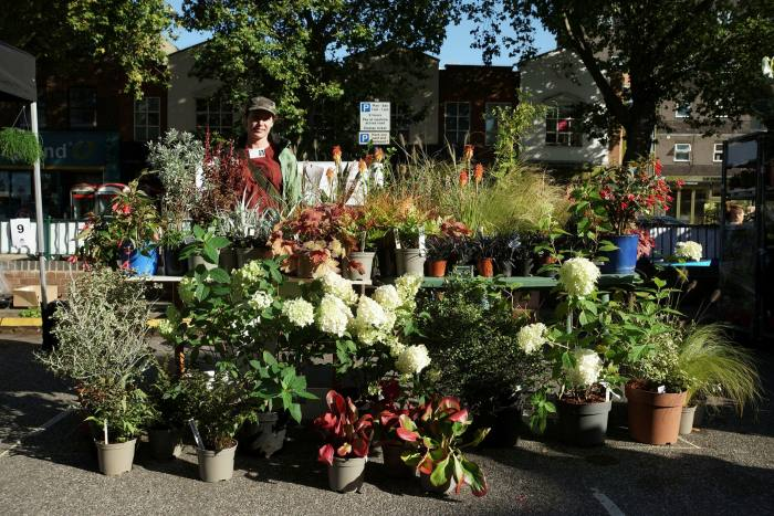 Chiswick's new monthly flower market, which launched in September 2020