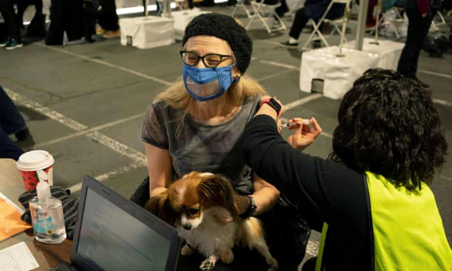 Carolyn Traub, an interpreter, receives a vaccine while holding her dog, Phoebe, at a mobile coronavirus vaccine clinic for members of the deaf and blind community, organized by Swedish Medical Center in Seattle earlier this month.