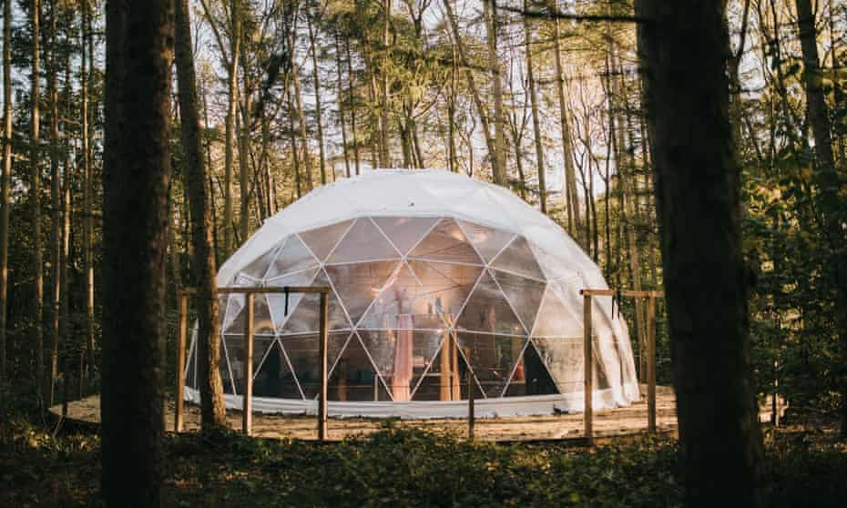 A geodome in forest