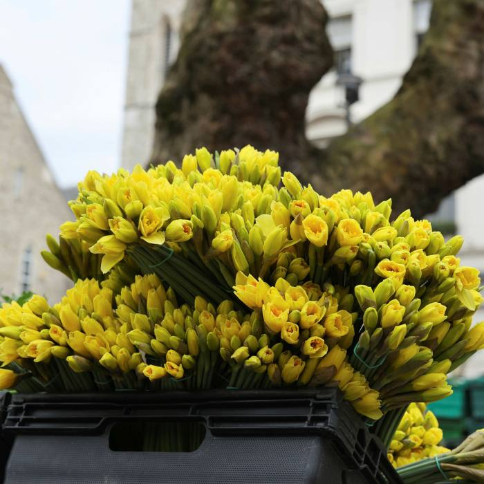 As well as food and drink, the market is equally renowned for the quality of its flowers