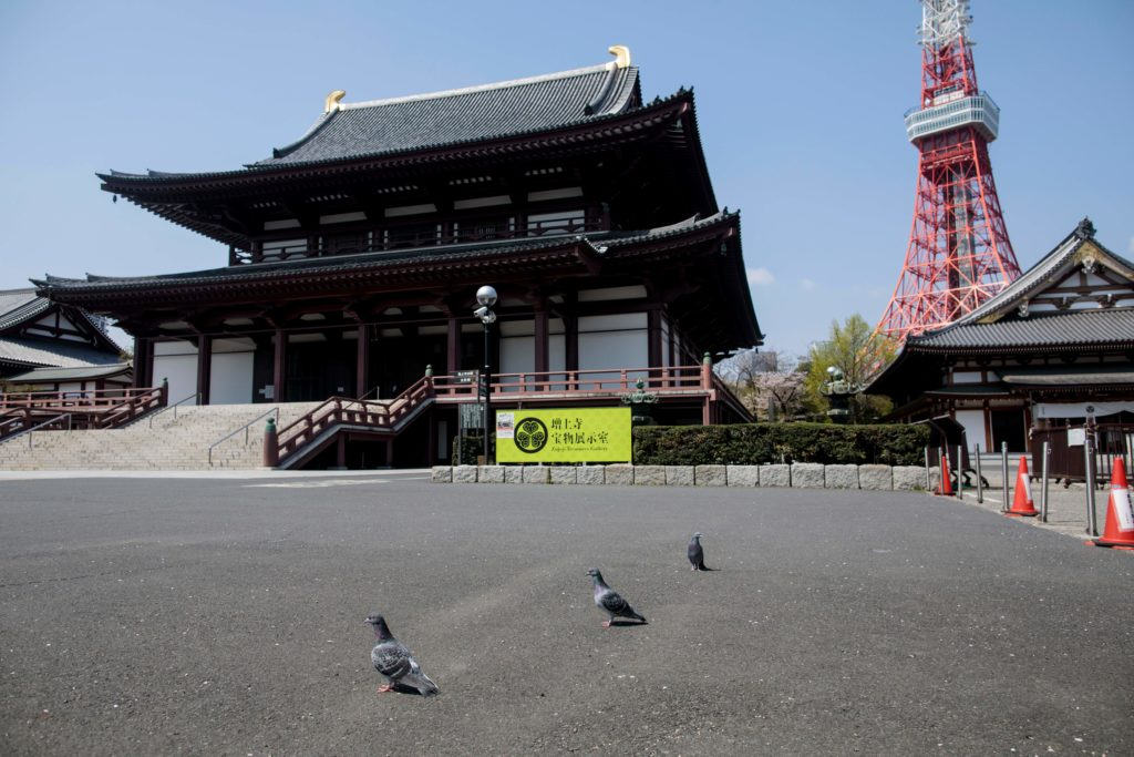 Pigeons wander at the grounds of the empty Zozoji Buddhist temple near the landmark Tokyo Tower in April 2020. (Photo by BEHROUZ MEHRI/AFP via Getty Images)