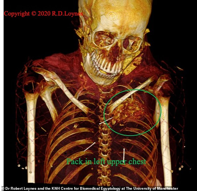 Takabuti is thought to have been a high-ranking woman who lived in the city of Thebes in Ancient Egypt , where modern-day Luxor is today, 2,600 years ago. Scans of her body reveal what researchers had previously thought to be her heart (pictured)