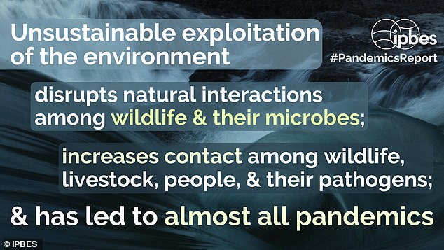 To inhibit outbreaks, we must cut down on drivers of biodiversity loss, such as deforestation and the wildlife trade, the experts said. This ¿ which could be achieved by taxing high pandemic-risk activities ¿ will reduce wildlife¿livestock¿human contact and disease spillover